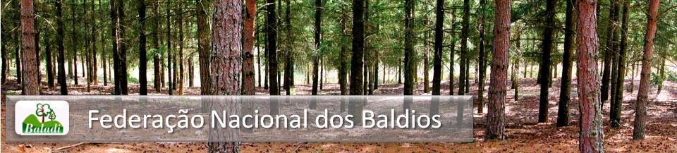 Baladi - Federação Nacional dos Baldios
